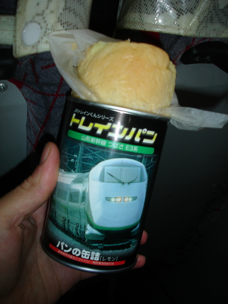 jp_2008 (538)
